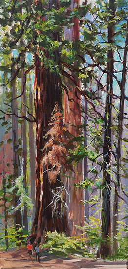 """Giant Forest 12""""x 24"""""""