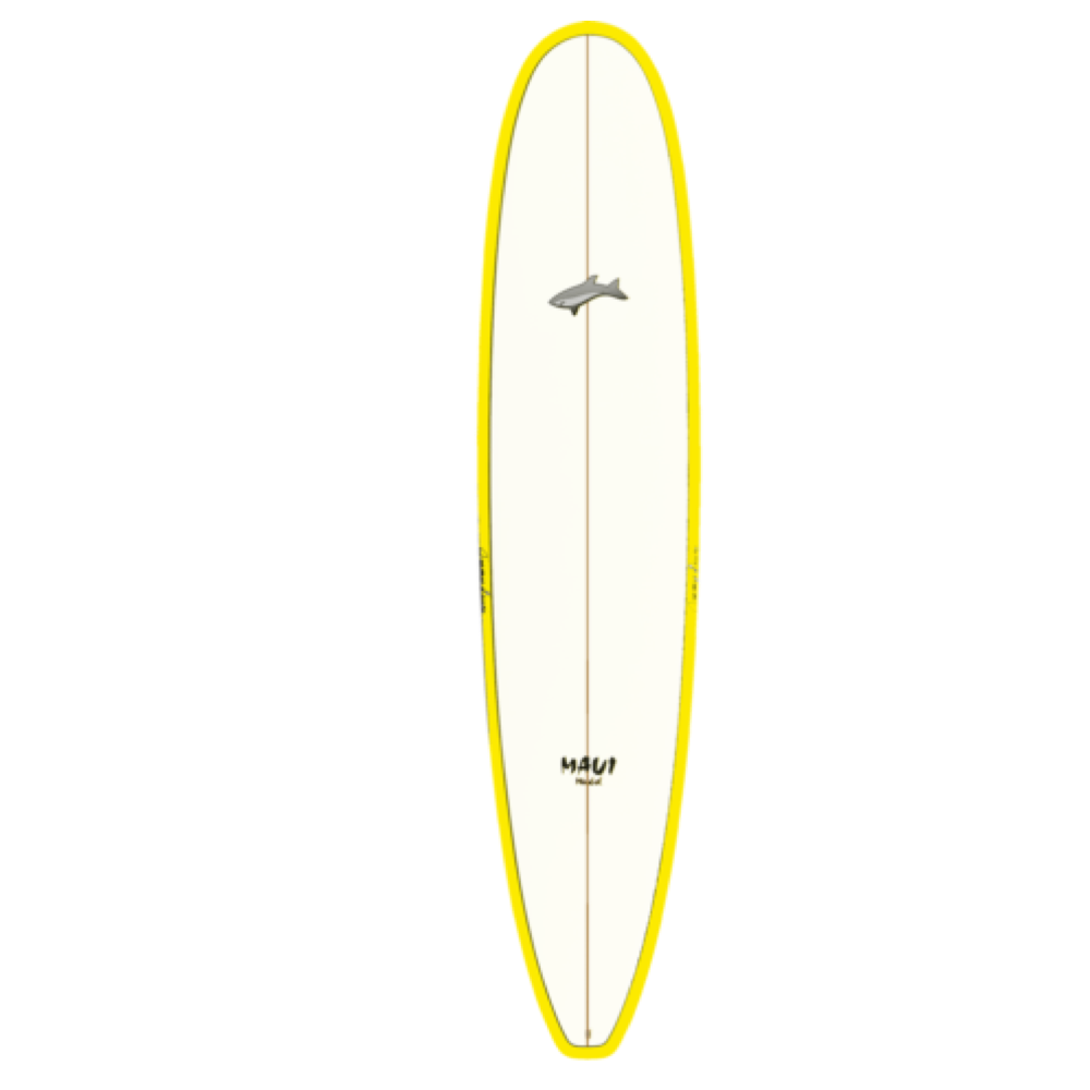 Kauai Surfboard Rental