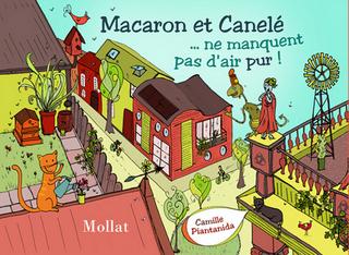 Macaron et Canelé 2