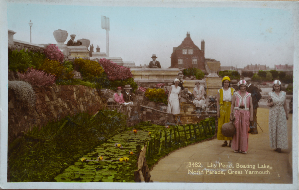 The lily pond at the Boating Lake