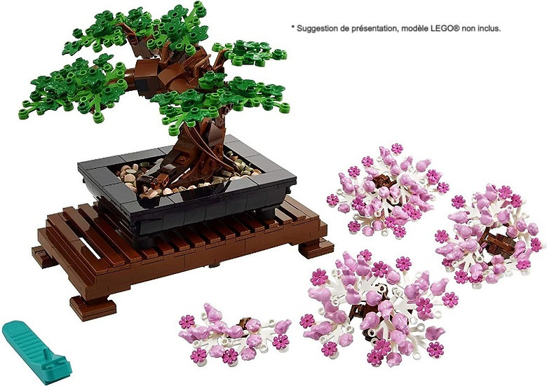 Vitrine BriquesaBoX pour Bonsaï Tree (LEGO® 10281 non inclus)