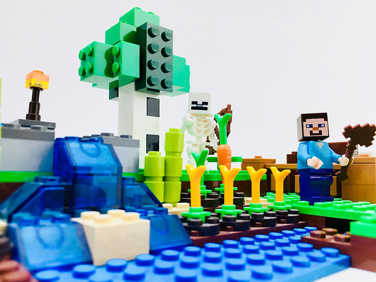 LEGO ® MINECRAFT 21114 La Ferme