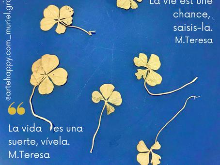 La vie est une chance...