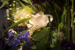 Hochzeiten-026.jpg
