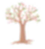 The cherry blossom tree of Narus