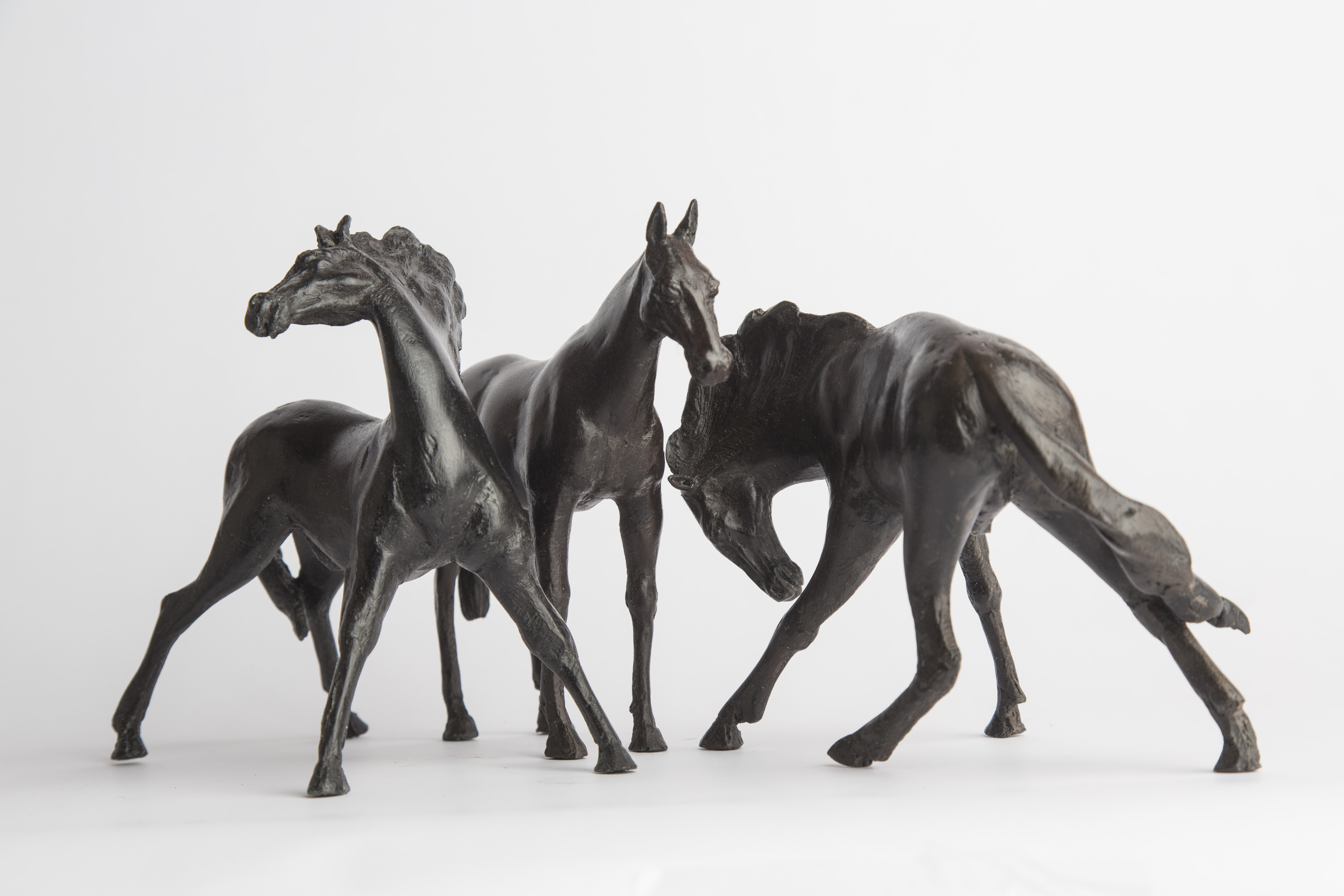 HORSE GROUP