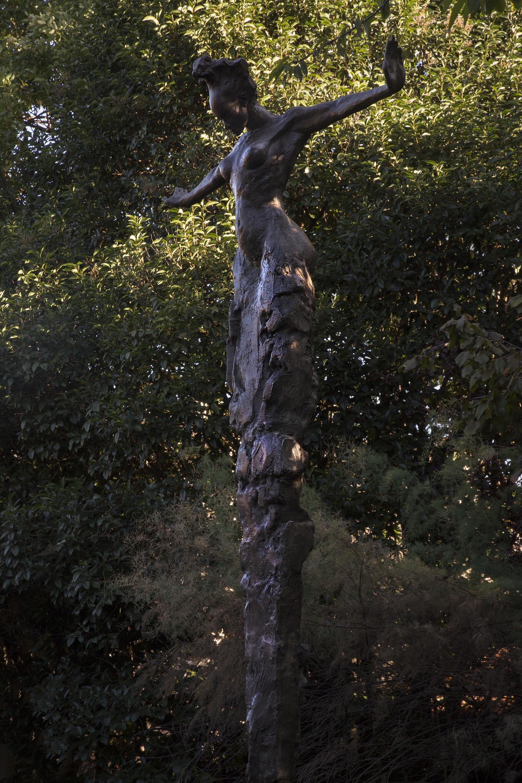 Aube | 5 m | 2004