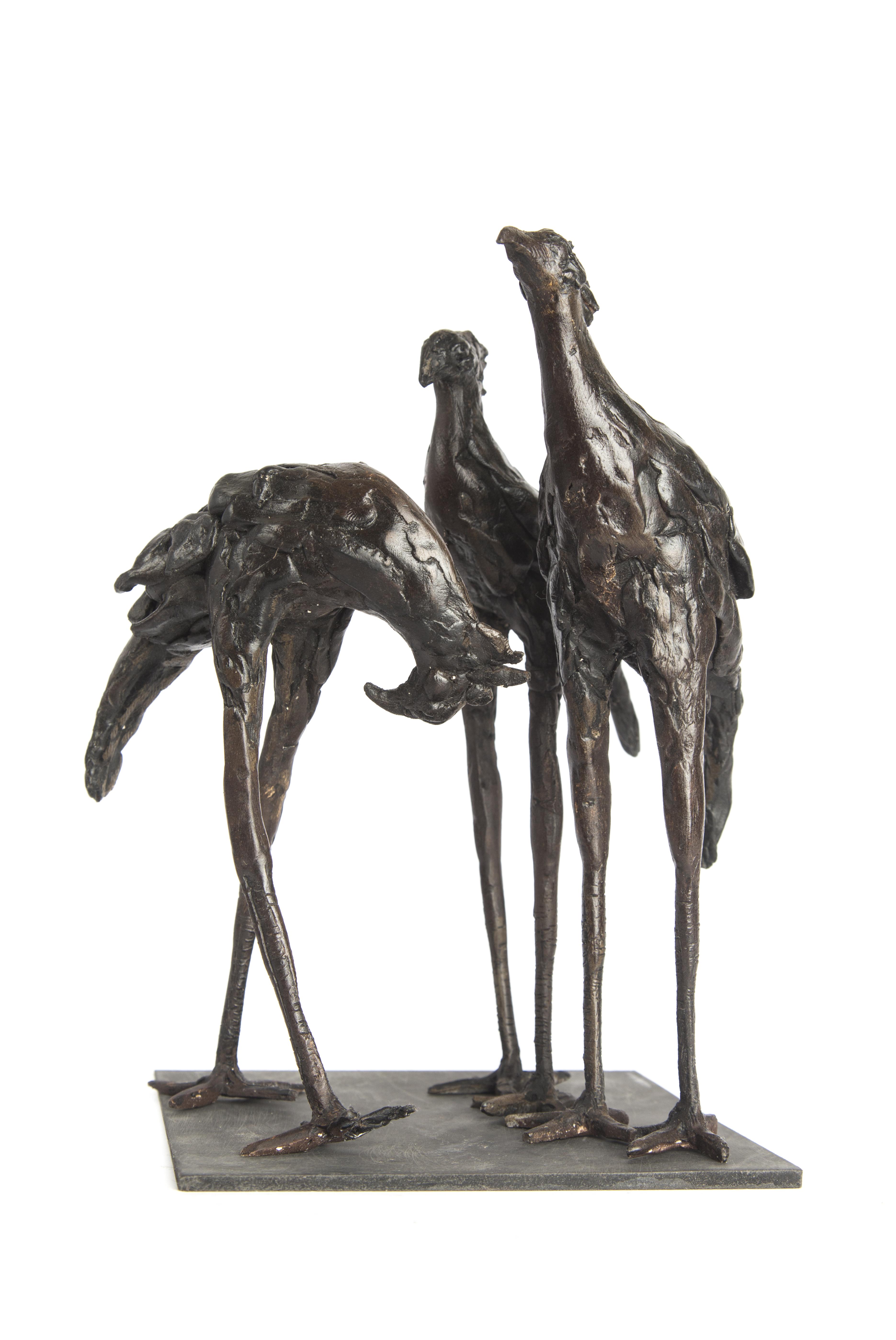 SERPENTAIRE / SECRETARY BIRD GROUP