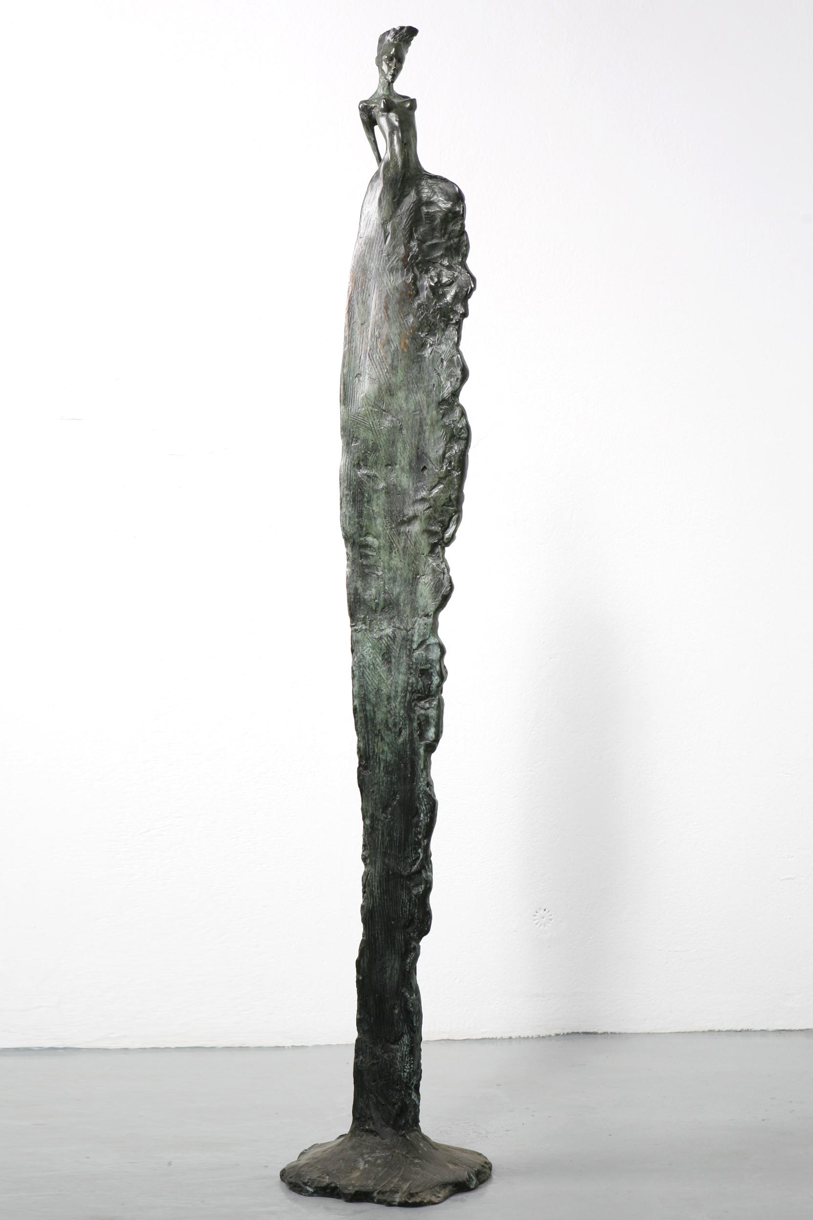 |  Linea  | 1,6 m | 2004