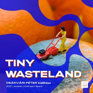 Tiny Wasteland