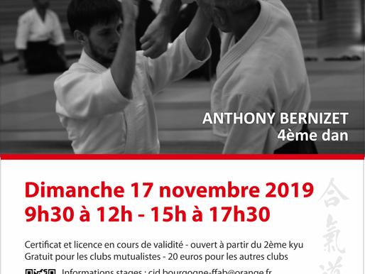Préparation 1er/2ème Dan à Arnay-le-Duc le 17 novembre
