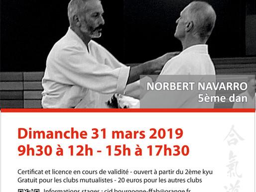 Préparation 1er/2ème Dan à Arnay-le-Duc le 31 mars