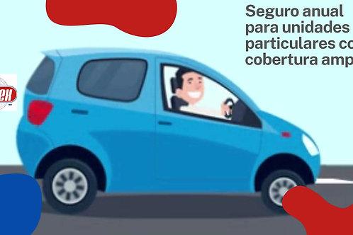 Seguro de auto particular