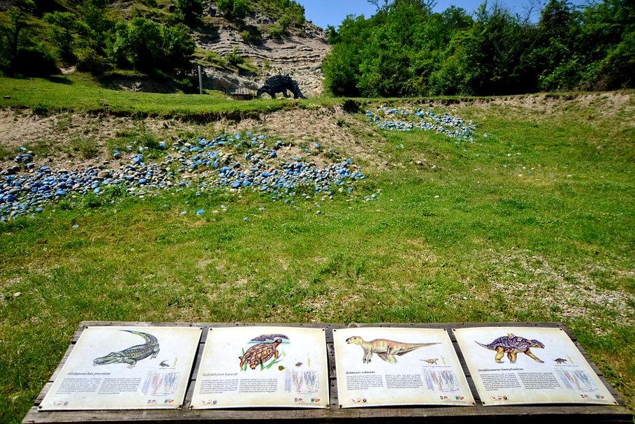 Valea_Dinozaurilor.jpg