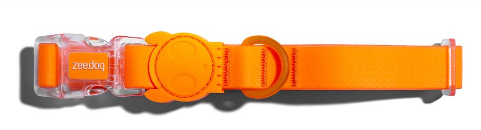 Neopro Tangarine Collar