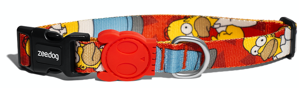 Homero Simpson Collar