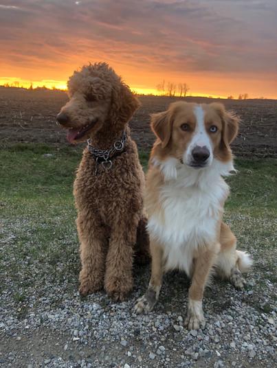 Memphis & his first girlfriend, Maisie