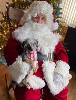 Oakley meets Santa. Oakley's first Christmas