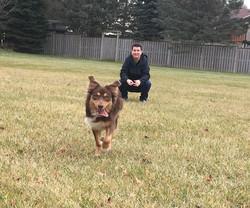 Sasha & her Guardian