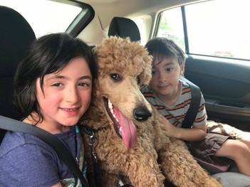Maisie & her 'kids'