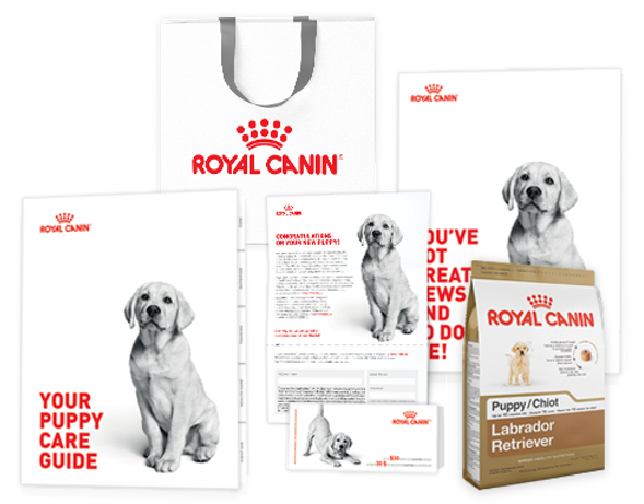 RoyalCanin_LabRetriever_ProductStarterKi
