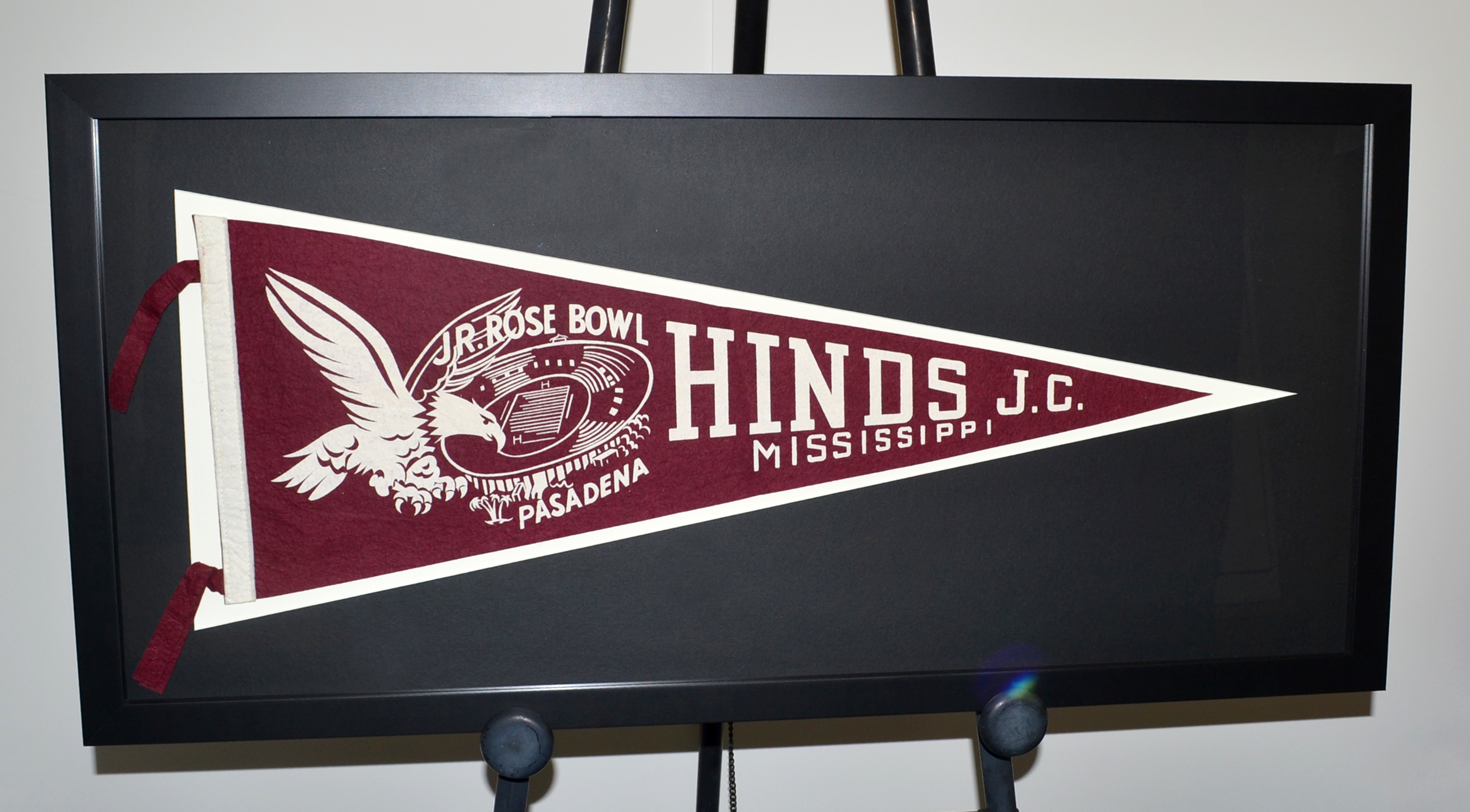 Hinds Flag