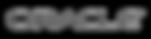 Oracle-Logo-768x198_modifié.png