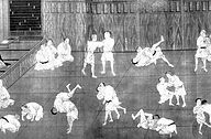 Roger Gracie Brazilian Jiu-jitsu BJJ History RGA Henley