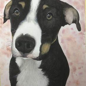 Watercolor Puppy