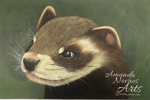 Ferret - Acrylic Painting