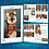 Thumbnail: Esquilo - Pintura Acrílica - Pt-br
