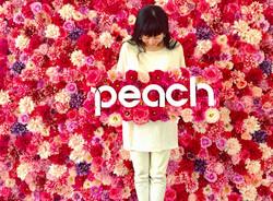 航空会社Peachs