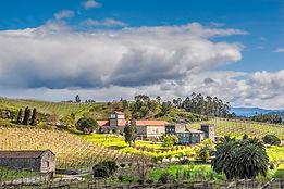 Excursion autour du vin d'Albariño