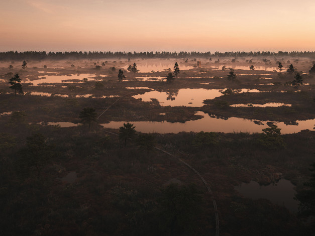 [Full CGI] These are all 3D renders. I created a large-scale landscape and it was a bliss to explore different lighting and fog/atmosphere scenarios. With this all-around ready-built scene it seemed like whatever lighting I tried it looked decent and the composition started to play a much bigger role. The environment is inspired by Estonian bogs.