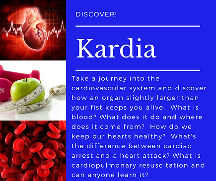 -Discover!-Kardia 2021.png
