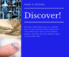 _Week 6-Discover!-Osteon.png