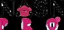 NASN logo.png