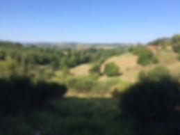 Domaine La Barbe, golf de gascogne dichtbij