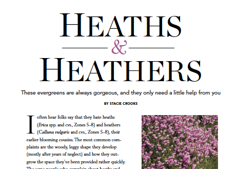 heath&heathers_edited.png