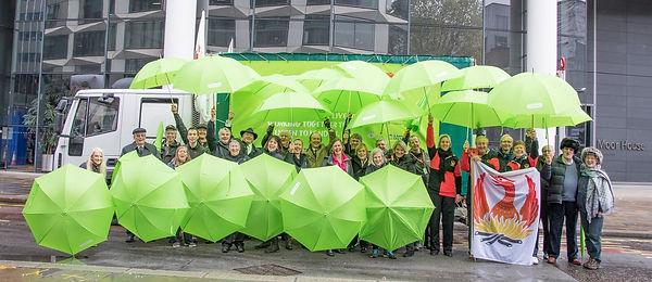 LMS umbrellas 2017.jpg