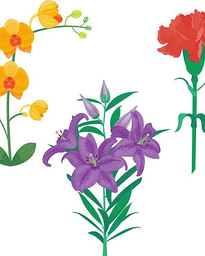 Quiz 4 Flowers icon.jpg