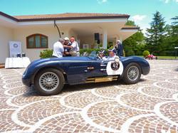 Jaguar XKC120C C-Type (6).jpg