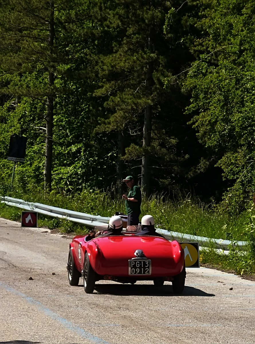 1952 Panhard  X86 Barchetta MM Crepaldi (6)