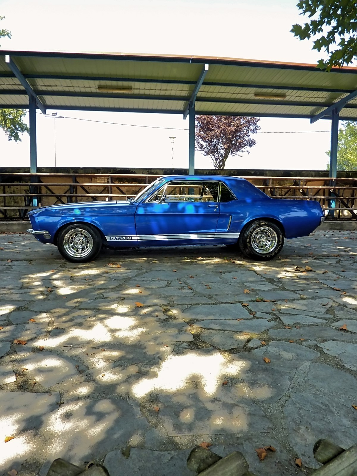 1968 Ford Mustang 289 (66).jpg