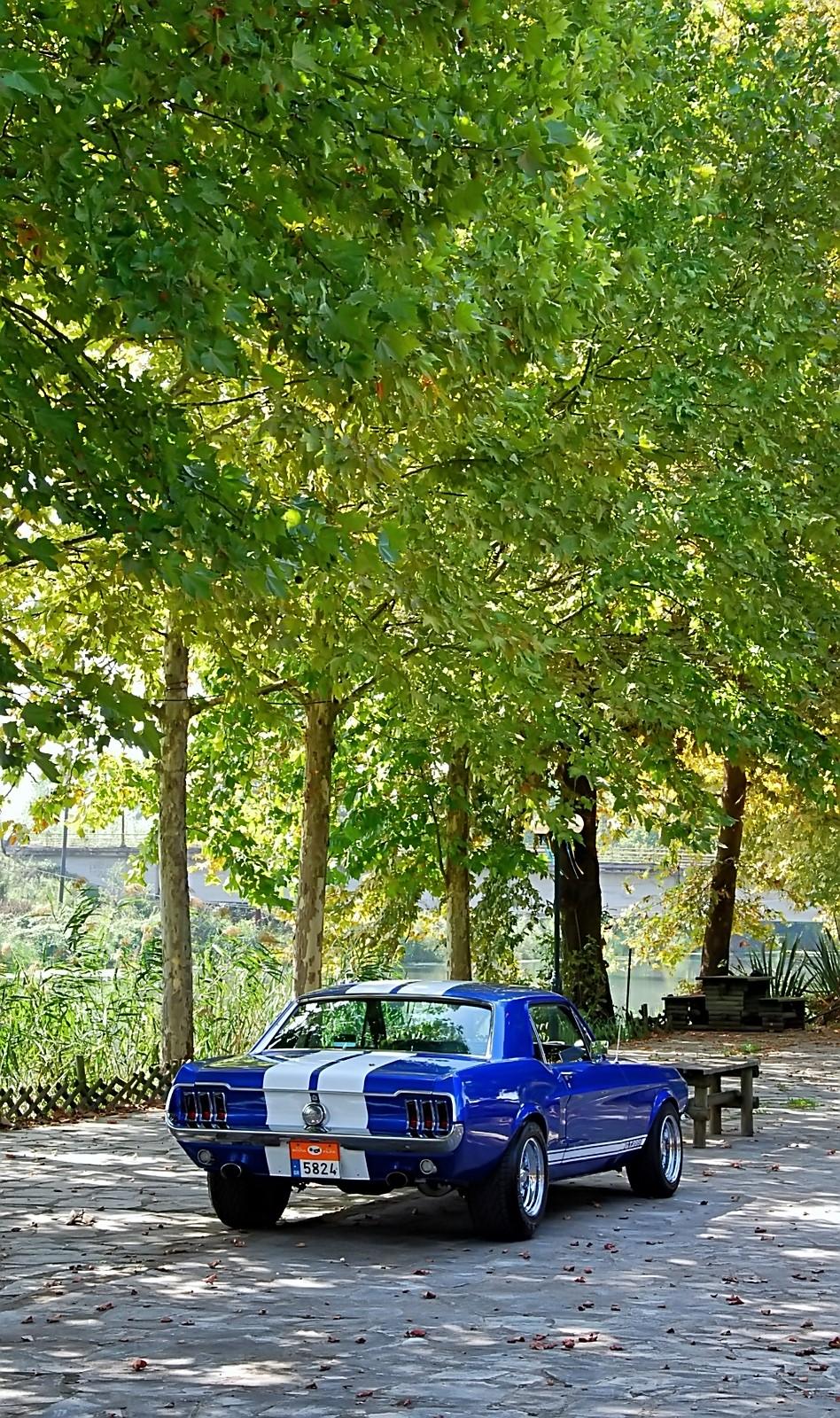 1968 Ford Mustang 289 (7).jpg