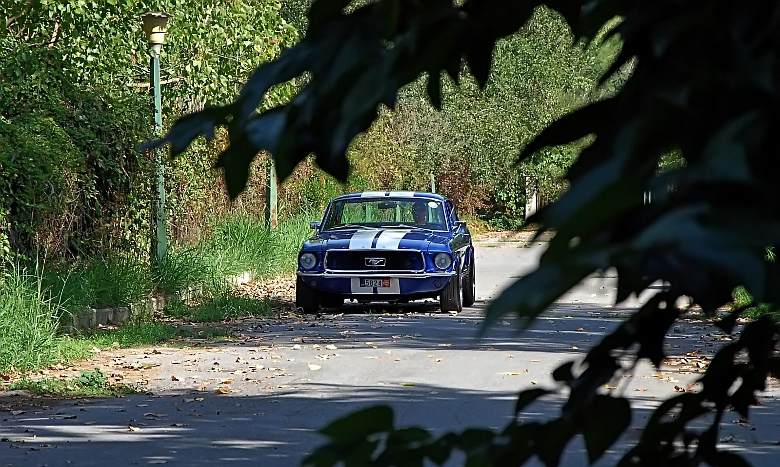 1968 Ford Mustang 289 (19).jpg
