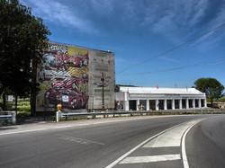 Floriopoli Natural Museum (38).jpg