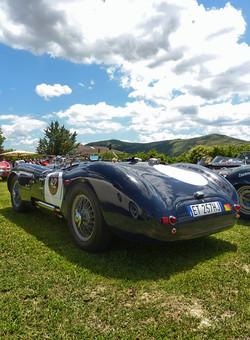 Jaguar XKC120C C-Type (9).jpg
