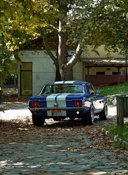 1968 Ford Mustang 289 (61).jpg