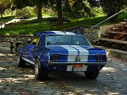 1968 Ford Mustang 289 (68).jpg